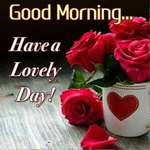 🌞 ഗുഡ് മോണിംഗ് - Good Morning . . . Have a Lovely Day ! - ShareChat