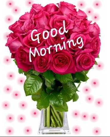 🌞 ഗുഡ് മോണിംഗ് - Good Morning CUSTO - ShareChat