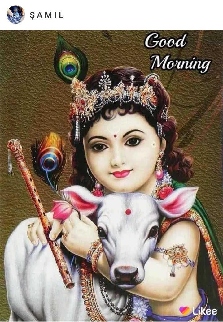 🌞 ഗുഡ് മോണിംഗ് - SE ŞAMIL SAMIL Good Morning Likee - ShareChat