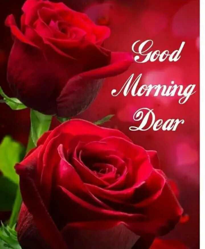 🌞 ഗുഡ് മോണിംഗ് - Good Morning Dear - ShareChat