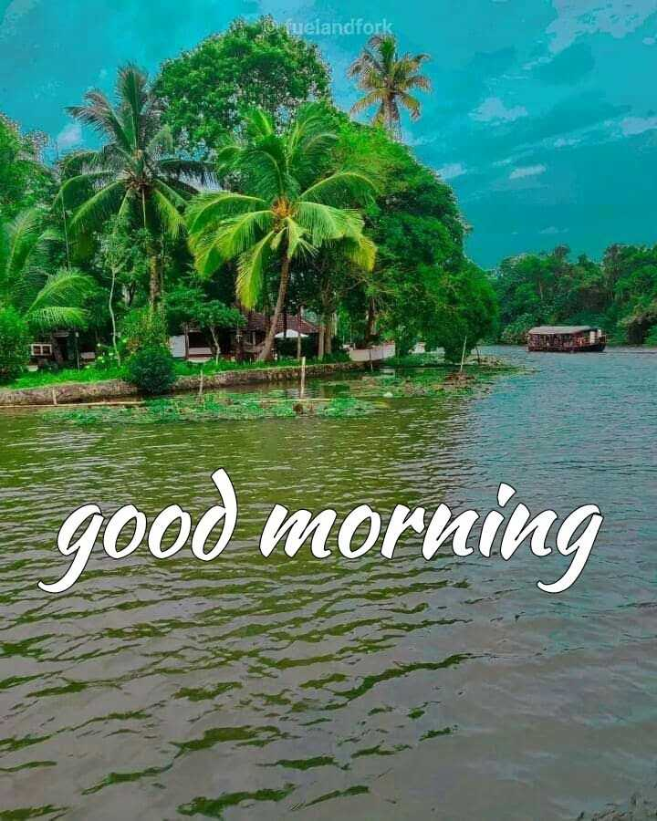 🌞 ഗുഡ് മോണിംഗ് - lo fuelandfork good morning - ShareChat