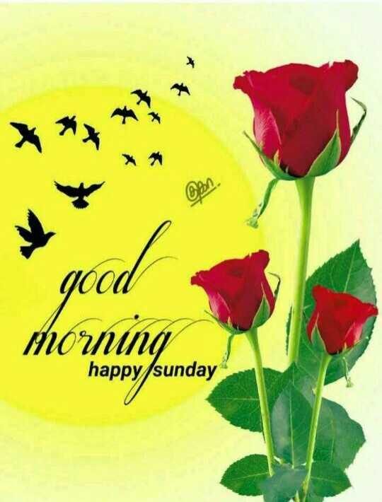 🌞 ഗുഡ് മോണിംഗ് - good morning happysunday - ShareChat