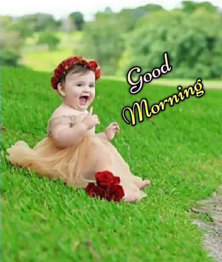 🌞 ഗുഡ് മോണിംഗ് - Good Morning - ShareChat