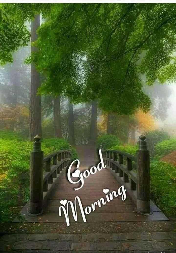 🌞 ഗുഡ് മോണിംഗ് - Morning - ShareChat