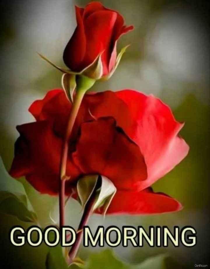 🌞 ഗുഡ് മോണിംഗ് - GOOD MORNING OSTPiccom - ShareChat