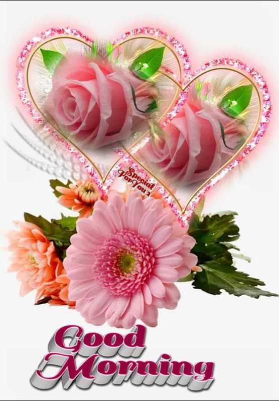 🌞 ഗുഡ് മോണിംഗ് - Cood Morning - ShareChat