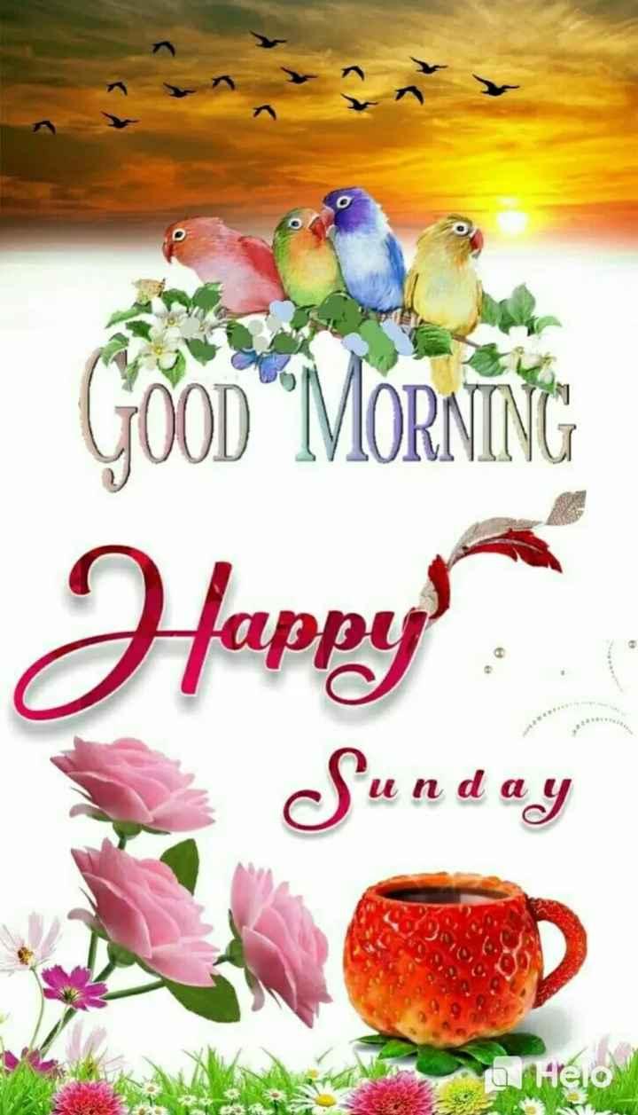 🌞 ഗുഡ് മോണിംഗ് - Jappy Sunday - ShareChat
