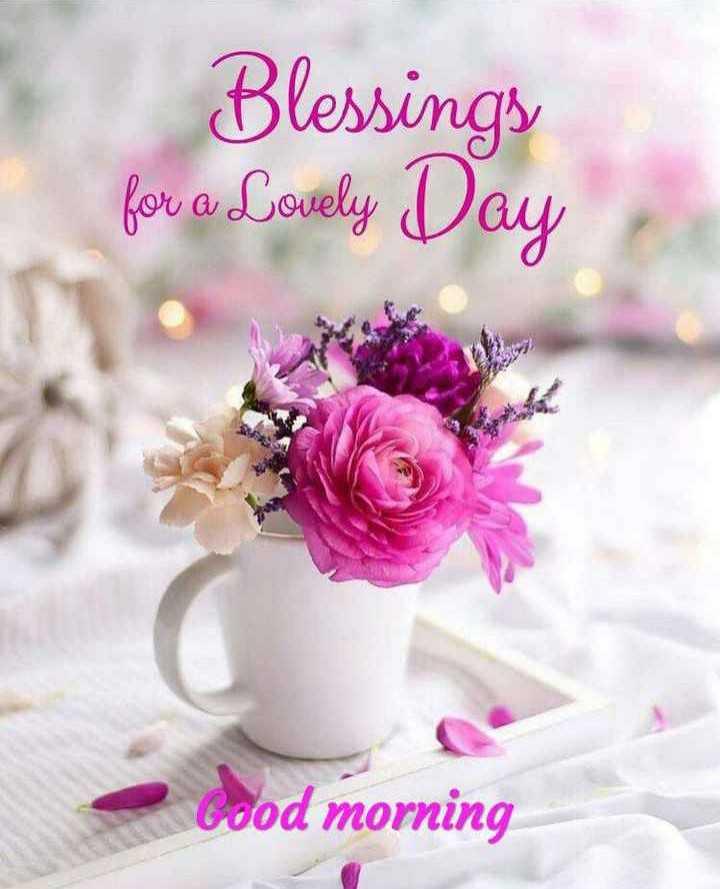🌞 ഗുഡ് മോണിംഗ് - Blessings for a Lovely Day cood morning - ShareChat