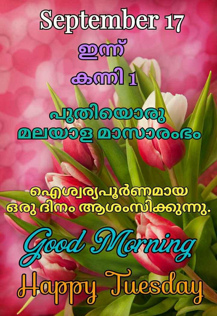 🌞 ഗുഡ് മോണിംഗ് - September 17 , ഇസ് കത്തി 11 പുതിയൊരു മലയാള മാസാരംഭം ഐശ്വര്യപൂർണമായി ഒരു ദിനം ആശംസിക്കുന്നു . Good Morning Happy Tuesday - ShareChat