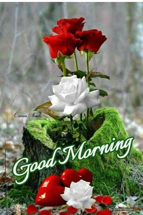 🌞 ഗുഡ് മോണിംഗ് - Cmran Mouli Good Morning @ gour By Omran Aboali - ShareChat