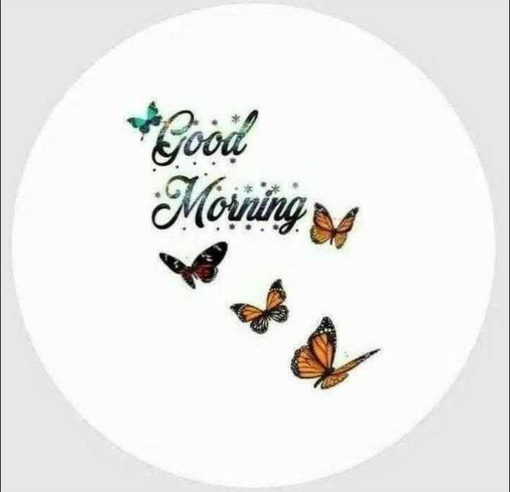 🌞 ഗുഡ് മോണിംഗ് - good Morning sa - ShareChat