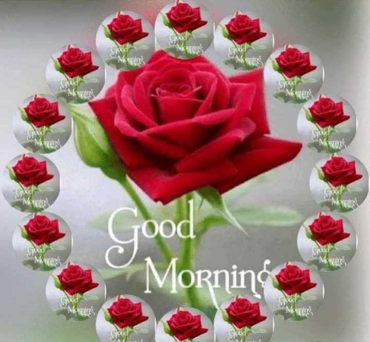 🌞 ഗുഡ് മോണിംഗ് - More SA Μουχίας MS Good Morning Mornin Maging - ShareChat