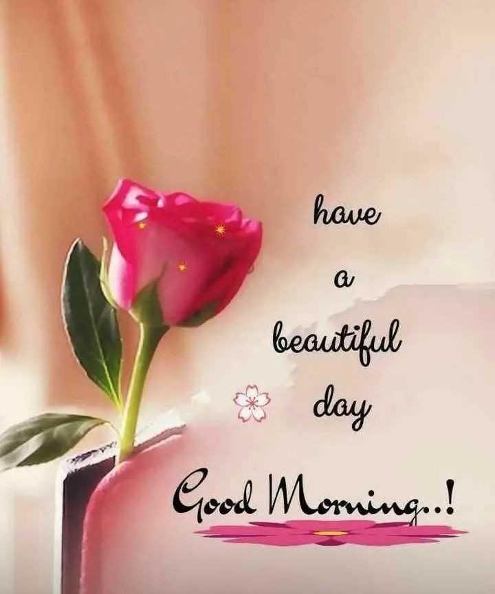 🌞 ഗുഡ് മോണിംഗ് - have beautiful 8 day Good Morning ! - ShareChat