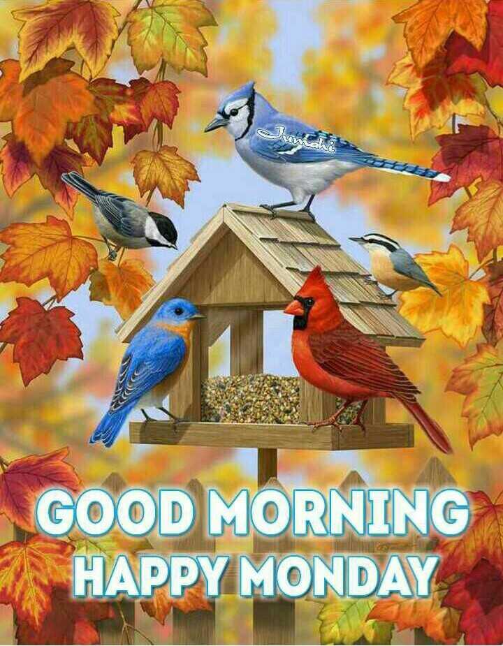 🌞 ഗുഡ് മോണിംഗ് - GOOD MORNING HAPPY MONDAY - ShareChat