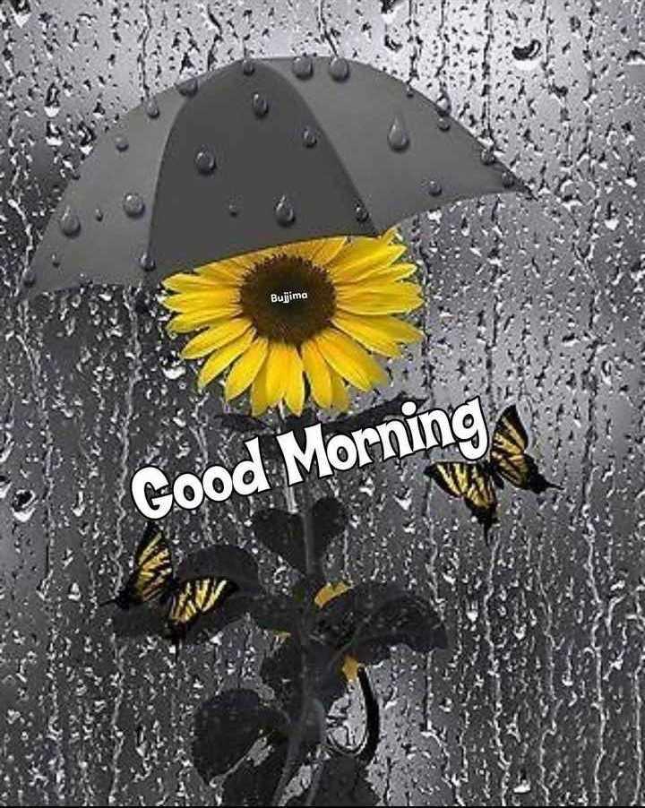 🌞 ഗുഡ് മോണിംഗ് - Bujjima Good Morning - ShareChat