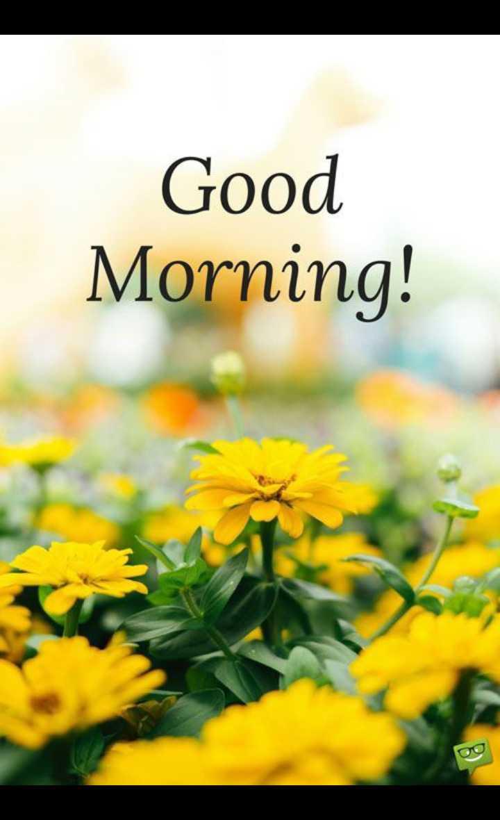 🌞 ഗുഡ് മോണിംഗ് - Good Morning ! - ShareChat