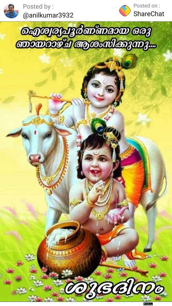 🌞 ഗുഡ് മോണിംഗ് - Posted by : @ anilkumar3932 Posted on : ShareChat ഐശ്വര്യപൂർണമായ ഒരു ഞായറാഴ്ച ആശംസിക്കുന്നു - 0 0 ആഭി re - ShareChat