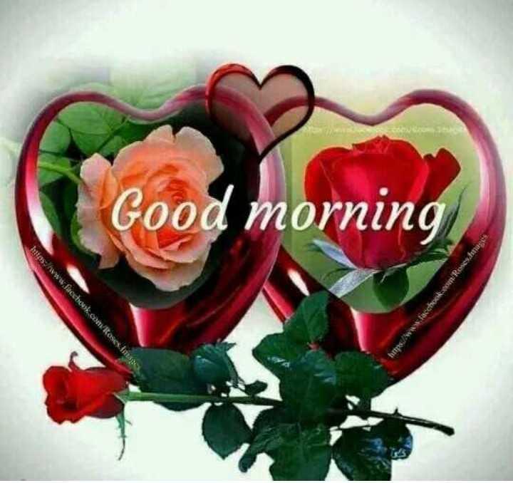 🌞 ഗുഡ് മോണിംഗ് - e facchocoRoses . d Good morning stas : / www . facchouk . contoses . Ima - ShareChat