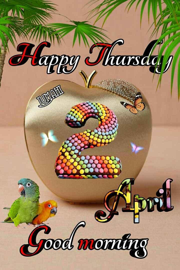 🌞 ഗുഡ് മോണിംഗ് - Happy Thursday NUrsaa JUMAH Good morning - ShareChat