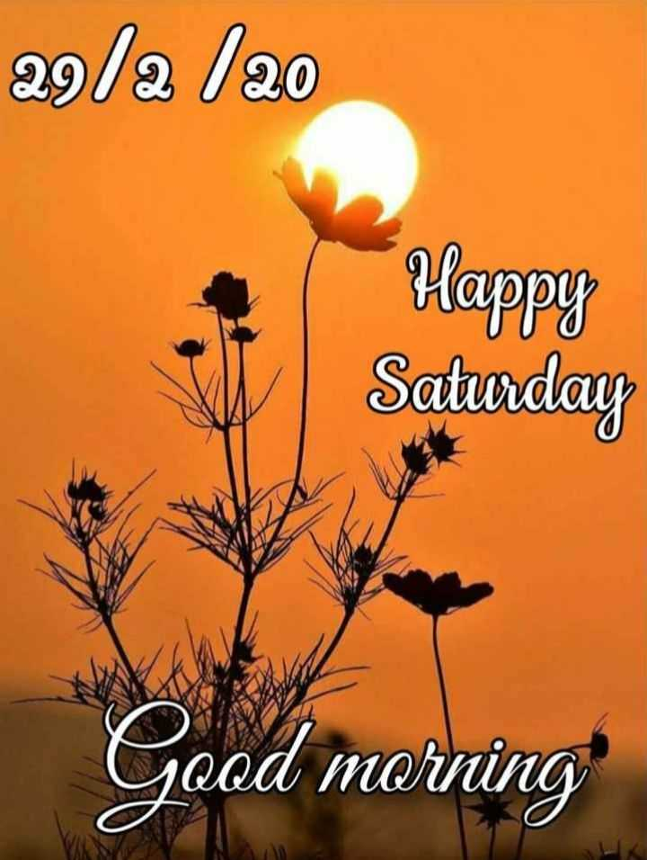 🌞 ഗുഡ് മോണിംഗ് - 29 / a 120 Happy Saturday Good morning - ShareChat
