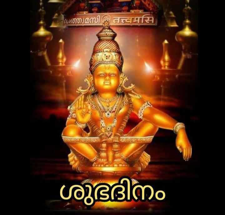 🌞 ഗുഡ് മോണിംഗ് - ( ) ത്ത്വമസി ശുഭദിനം - ShareChat