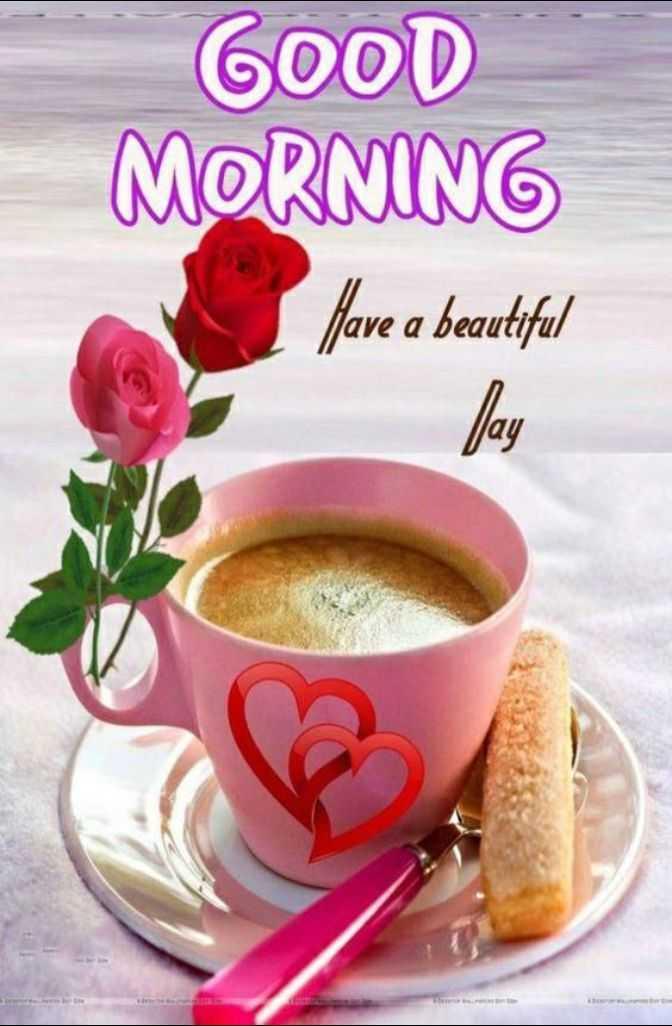 🌞 ഗുഡ് മോണിംഗ് - GOOD MORNING Have a beautiful - ShareChat