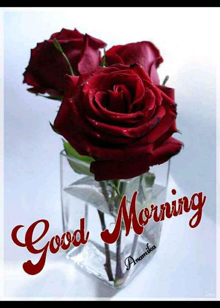 🌞 ഗുഡ് മോണിംഗ് - Good Morning Anamika - ShareChat