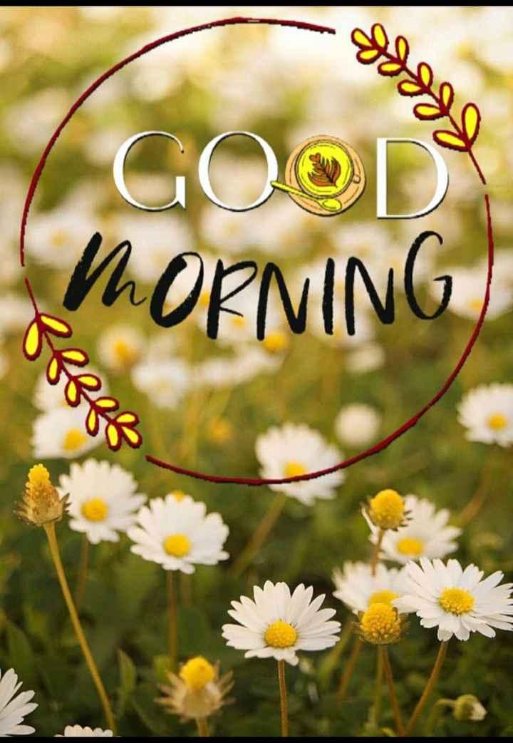🌞 ഗുഡ് മോണിംഗ് - googd GOOD MORNING - ShareChat