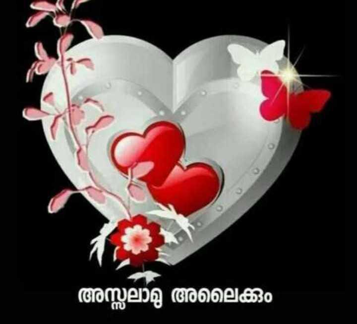 🌞 ഗുഡ് മോണിംഗ് - അസ്സലാമു അലൈക്കും സ - ShareChat
