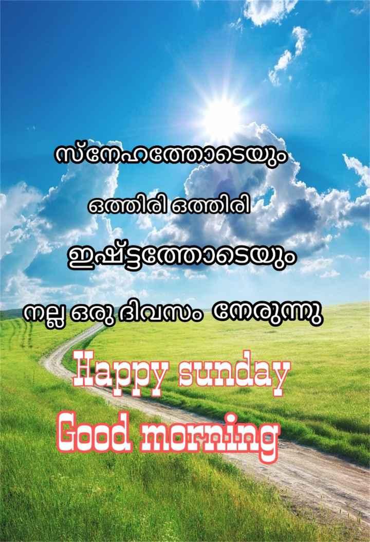 🌞 ഗുഡ് മോണിംഗ് - സ്നേഹത്തോടെയും ഒത്തിരി ഒത്തിരി ഇഷ്ടത്തോടെയും - നല്ല ഒരുദി രുത്തു Happy sunday Good morning - ShareChat