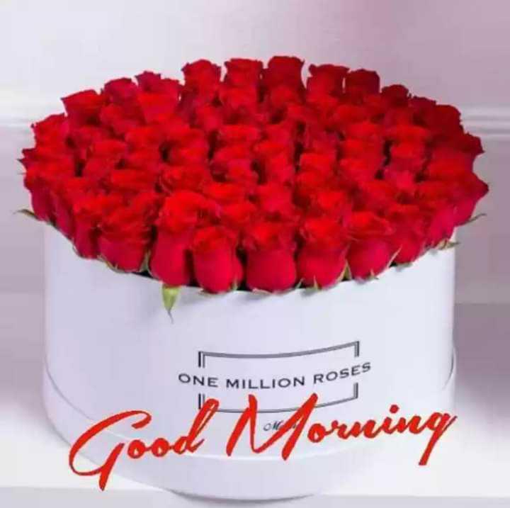 🌞 ഗുഡ് മോണിംഗ് - ONE MILLION RO ON ROSES - ShareChat