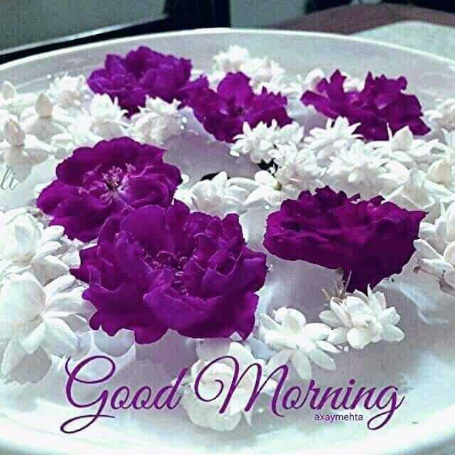 🌞 ഗുഡ് മോണിംഗ് - Good Morning axaymehta - ShareChat