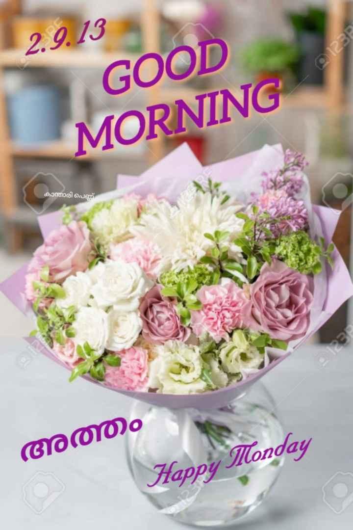 🌞 ഗുഡ് മോണിംഗ് - 29 3 ct 20 - GOOD MORNING കാന്താരി പെണ് അത്തം Happy Monday - ShareChat