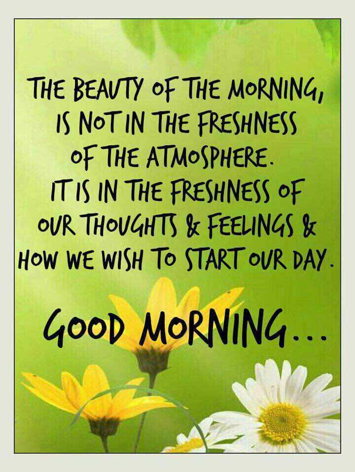 🌞 ഗുഡ് മോണിംഗ് - THE BEAUTY OF THE MORNING , IS NOT IN THE FRESHNESS OF THE ATMOSPHERE . IT IS IN THE FRESHNESS OF OUR THOUGHTS & FEELINGS & HOW WE WISH TO START OUR DAY . GOOD MORNING . . . - ShareChat