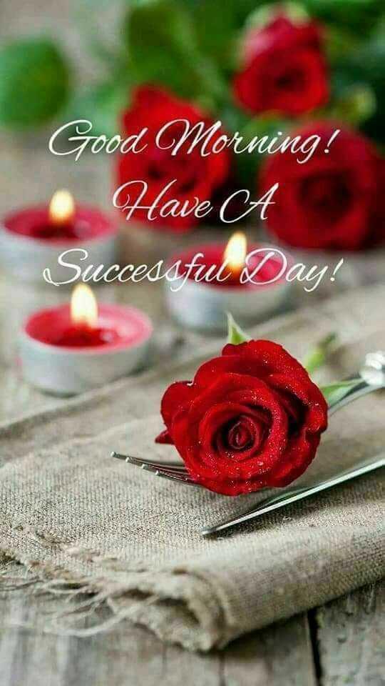 🌞 ഗുഡ് മോണിംഗ് - Good Morning ! Have A Successful Day ! - ShareChat