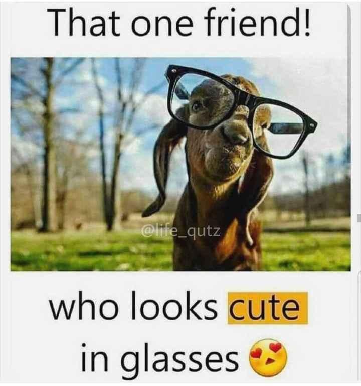 😂 ട്രോളുകൾ - That one friend ! @ life _ qutz who looks cute in glasses - ShareChat
