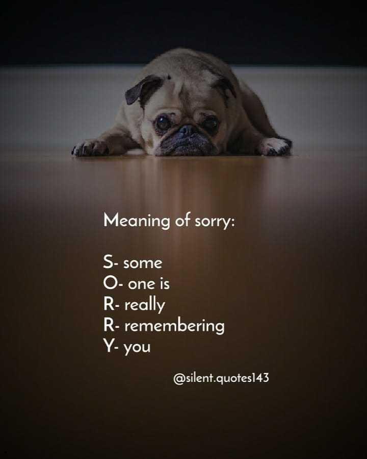 ഡയലോഗ് സ്റ്റാറ്റസ് - Meaning of sorry : S - some O - one is R - really R - remembering Y - you @ silent . quotes143 - ShareChat