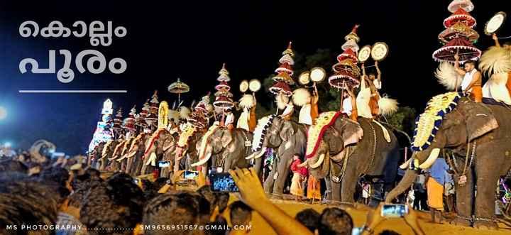 തൃശൂർ പൂരം - കൊല്ലം - പൂരം MS PHOTOGRAPHY . ' S M 9 6 5 6 9 5 15 6 7 @ C MATL . C o M - ShareChat