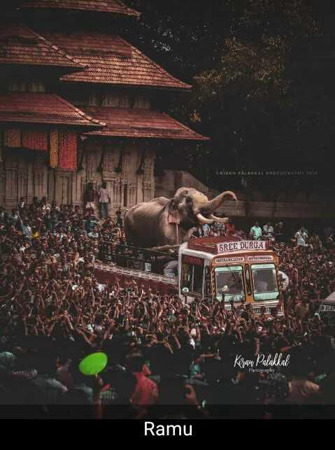 തൃശ്ശൂർ പൂരം - SREE DURGA Keran Palakkal Photography Ramu - ShareChat