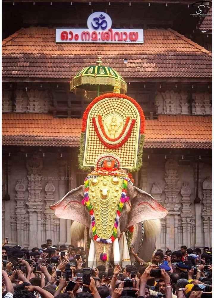 തൃശ്ശൂർ പൂരം - ഓം നമ : ശിവായ ANANDHU PALLURUT - ShareChat