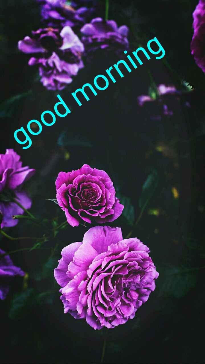 പുലര്കാലം - good morning - ShareChat
