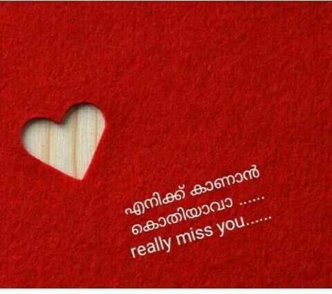 🎁 പ്രണയ കഥകൾ - എനിക്ക് കാണാൻ കൊതിയാവാ . . . . . really miss you . . . - ShareChat