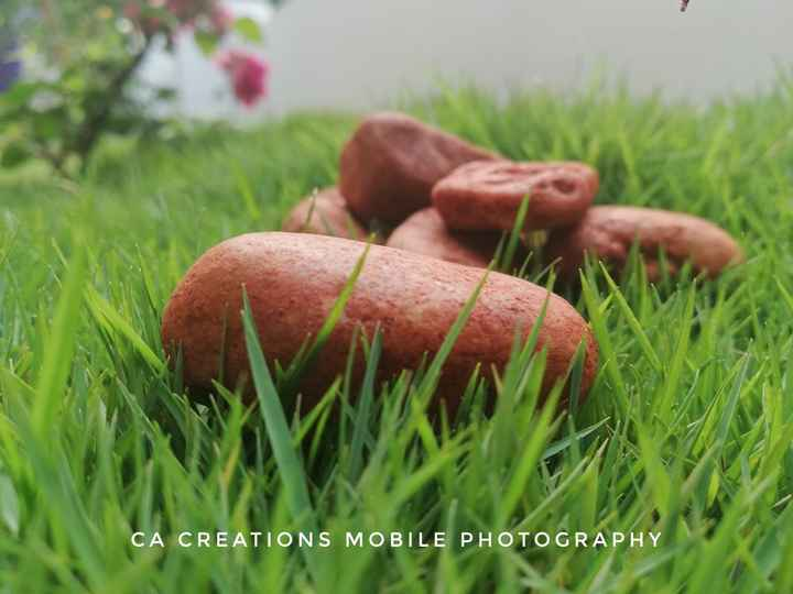 ഫോട്ടോഗ്രാഫി - CA CREATIONS MOBILE PHOTOGRAPHY - ShareChat