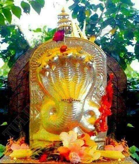 🐍 മണ്ണാറശ്ശാല ആയില്യം - ShareChat