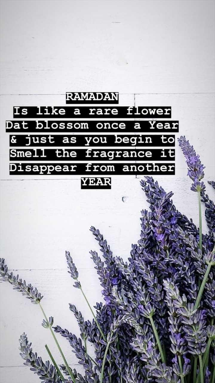 റമദാൻ വിശേഷങ്ങൾ - RAMADAN T Is like a rare flower Dat blossom once a Year & just as you begin tone Smell the fragrance it Disappear from another YEAR - ShareChat