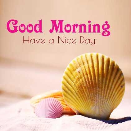 🎨 ലുക്ക - Good Morning Have a Nice Day - ShareChat