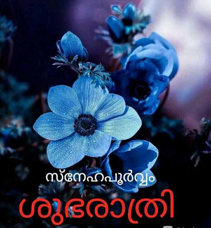 💖ശുഭരാത്രി സുഖനിദ്ര - | സ്നേഹപൂർവ്വം - ശുഭരാത്രി - ShareChat