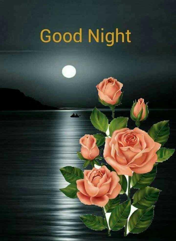 ശുഭരാത്രി .. - Good Night - ShareChat
