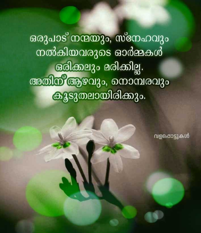 🗽 ഷെയര്ചാറ്റ് വിശേഷങ്ങള് - ShareChat