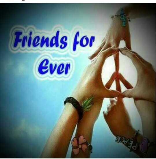 🤝 സുഹൃദ്ബന്ധം - Friends for Ever - ShareChat